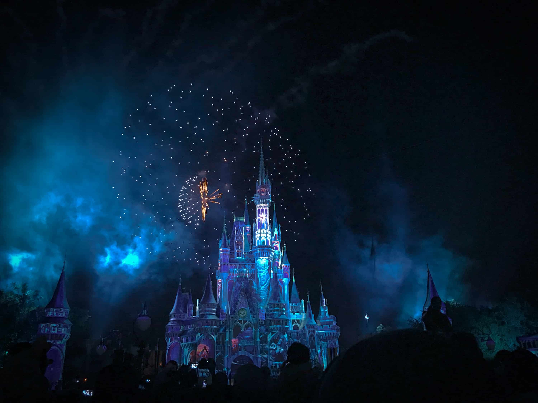 Dyreriget – det nyeste hos Disney